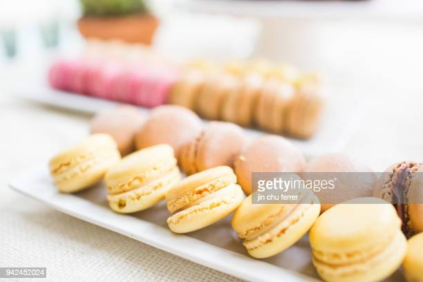 More Macarons at My Cactus and Succulent Baby Shower