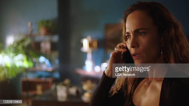 "More Money More Problems"" Episode 505 -- Pictured in this screengrab: Alice Braga as Teresa Mendoza --"