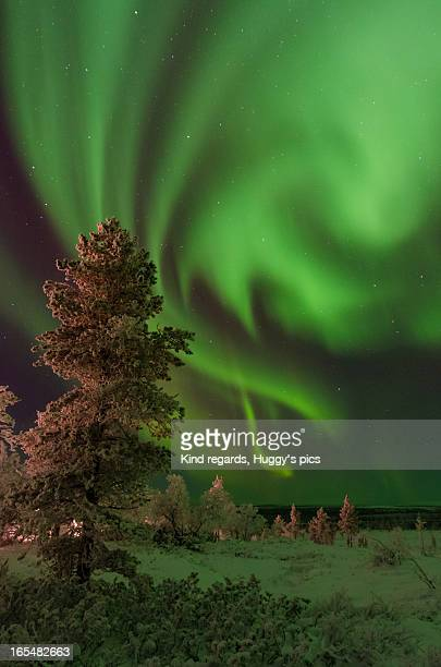 More Northern Lights.