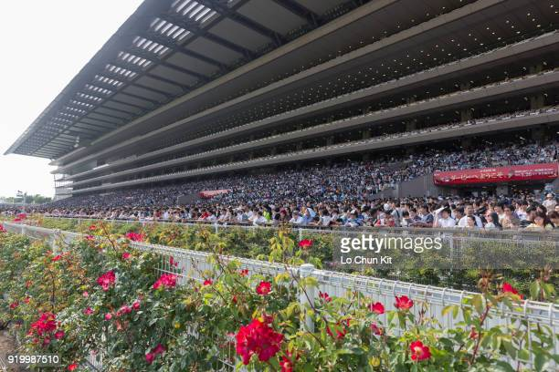 More than 139000 racing fans attend the Tokyo Yushun race day at Tokyo Racecourse on May 26 2013 Tokyo Yushun Japanese Derby is the second leg of...