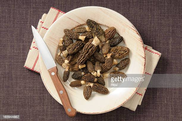 morels - morel mushroom stock pictures, royalty-free photos & images