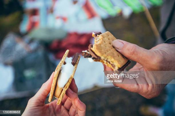 s'mores, personal perspective smores, two people holding s'mores, s'more, togetherness - cracker snack stock pictures, royalty-free photos & images