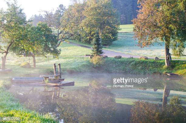 Morgenstimmung am See im herbstlichen Schwarzwald