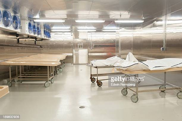 morgue - morgue freezer stock photos and pictures