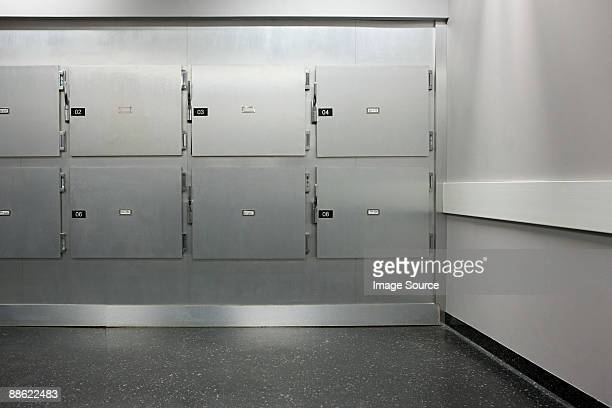 morgue - autopsy stock pictures, royalty-free photos & images