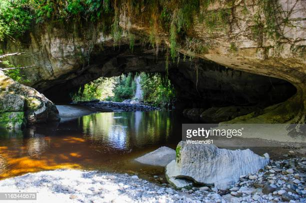 moria gate arch in the oparara basin, karamea, south island, new zealand - kahurangi national park bildbanksfoton och bilder