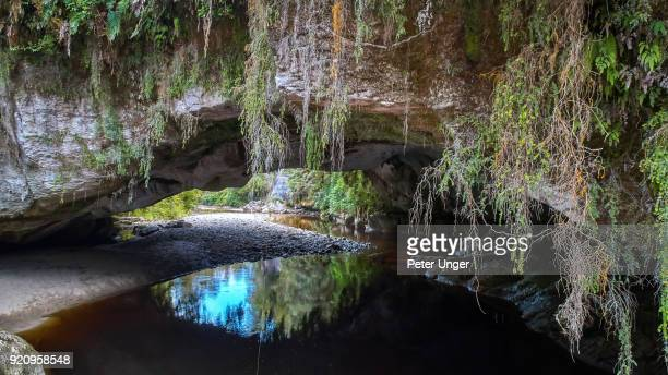 moria gate arch, oparara basin arches, west coast region, south island, new zealand - kahurangi national park bildbanksfoton och bilder