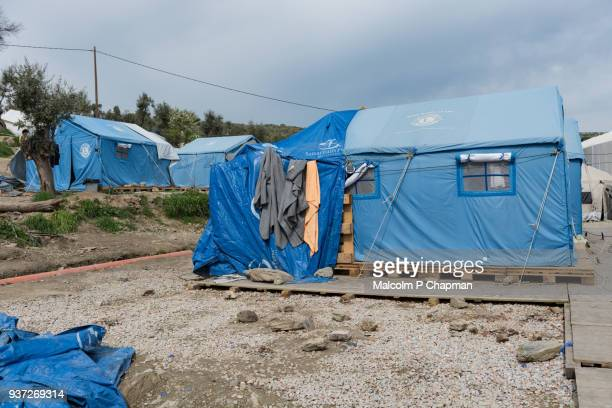 moria refugee camp, makeshift camp in olive grove, an overflow to the main camp next door, lesvos, greece. - moria refugee camp lesbos stockfoto's en -beelden