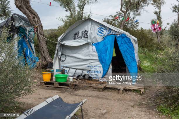 moria refugee camp, makeshift camp in olive grove, an overflow to the main camp, lesvos, greece. - moria refugee camp lesbos stockfoto's en -beelden