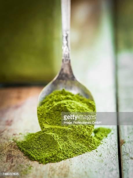 moringa powder on a spoon - moringa tree stock photos and pictures