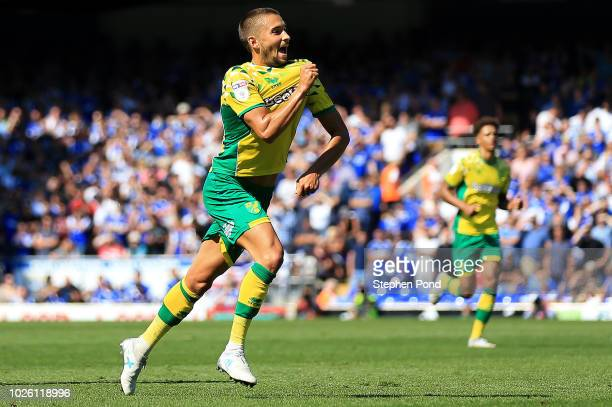 Moritz Leitner of Norwich City celebrates after scoring his team's first goal during the Sky Bet Championship match between Ipswich Town and Norwich...