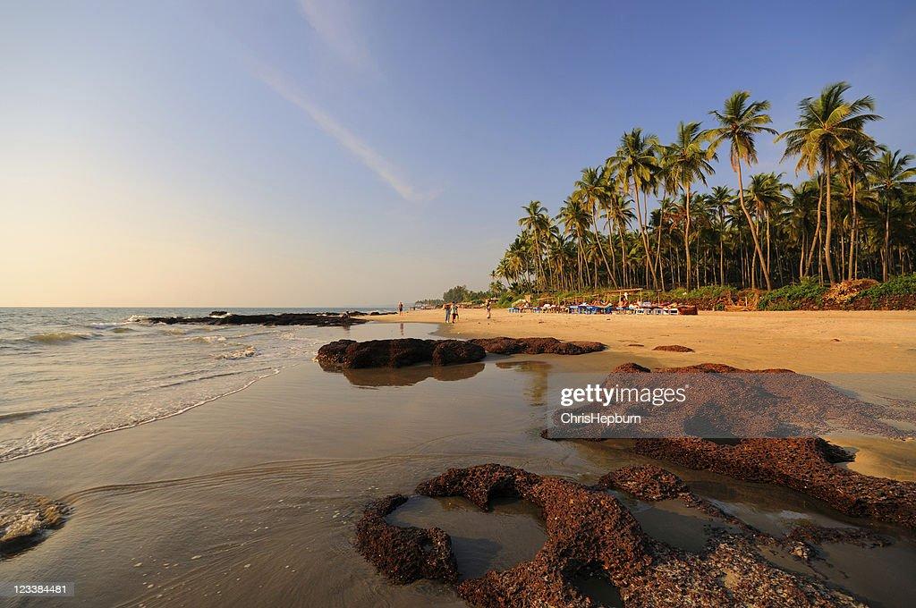 Morjim Beach, Goa, India : Stock Photo