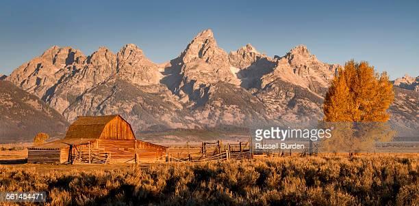 Mormon barn and Grand Teton at Sunrise