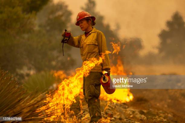 Mormon Lake Hotshots firefighter Sara Sweeney uses a drip torch to set a backfire to protect mountain communities from the Bobcat Fire in the Angeles...