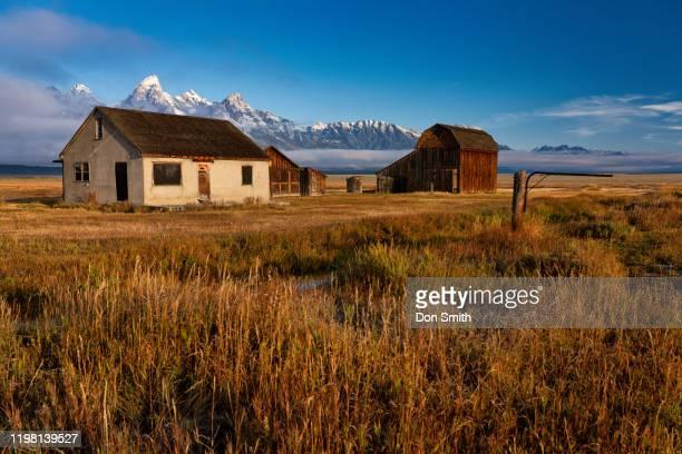 mormon row, grand teton national park - don smith stock pictures, royalty-free photos & images