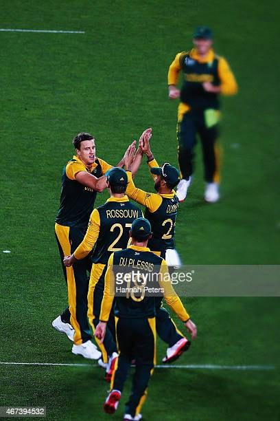 Morne Morkel of South Africa celebrates after bowling Kane Williamson of New Zealand out during the 2015 Cricket World Cup Semi Final match between...