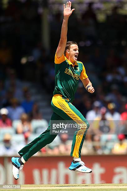 Morne Morkel of South Africa celebrates the dismissal of David Warner of Australia during the One Day International match between Australia and South...