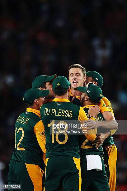 Morne Morkel of South Africa celebrates with the team after getting the wicket of Kane Williamson of New Zealand during the 2015 Cricket World Cup...