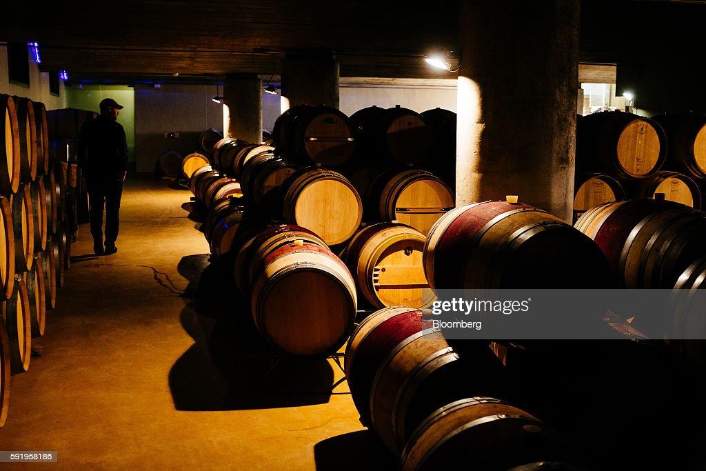 storage oak wine barrels. Morne Vrey, A Winemaker, Inspects Darnajou French Oak Wine Barrels Stored At The Delaire Storage