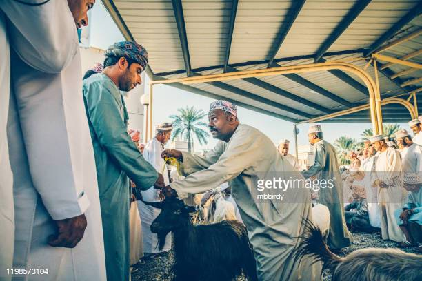 morning at nizwa souk, goat market, oman - bid stock pictures, royalty-free photos & images