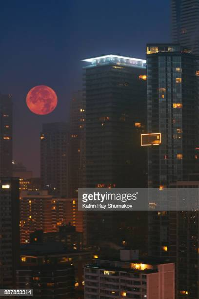 morning blue hour of gorgeous super moon - pink moon stock pictures, royalty-free photos & images