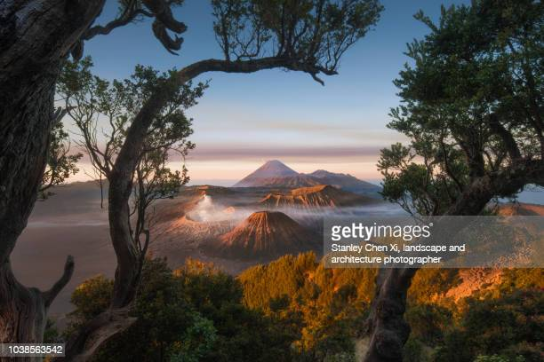 morning bromo - mt bromo stock photos and pictures