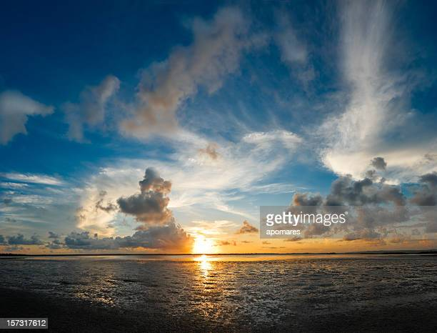 morning cloudscape - sunset beach stock photos and pictures