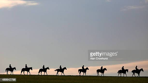 Morning exercise on the gallops at Newmarket on September 25 2015 in Newmarket England