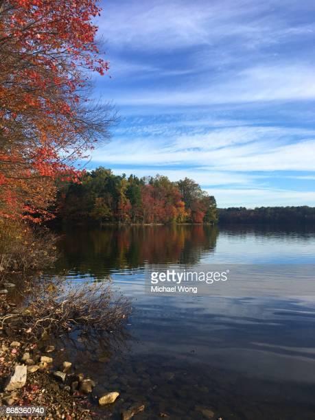 Morning Fall foliage at the lake
