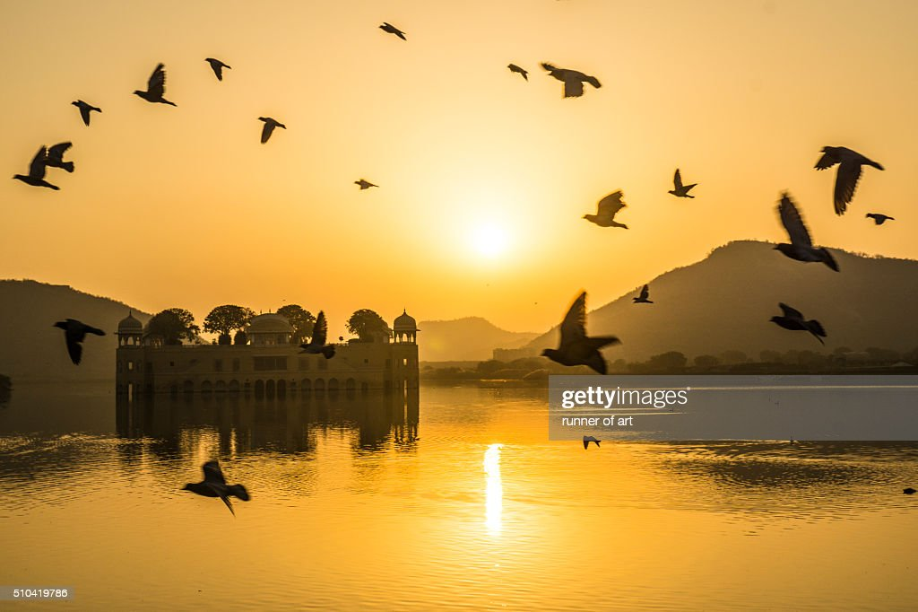 Morning fly at Jal Mahal : Stock Photo