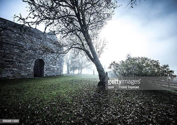 Morning fog at the old church