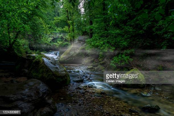morning fog in the schéissendëmpel waterfall - historique stock pictures, royalty-free photos & images