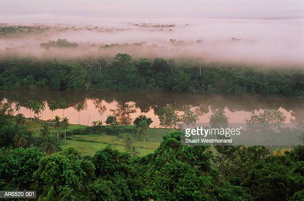 morning fog, karawari river, papua new guinea - papua new guinea stock pictures, royalty-free photos & images