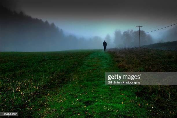 morning fog - 中距離 ストックフォトと画像