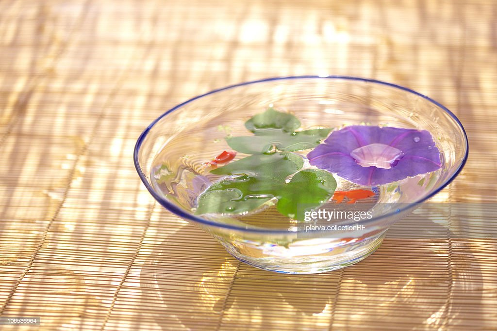 Morning glory and goldfish in glass bowl, Kanagawa prefecture, Japan : ストックフォト