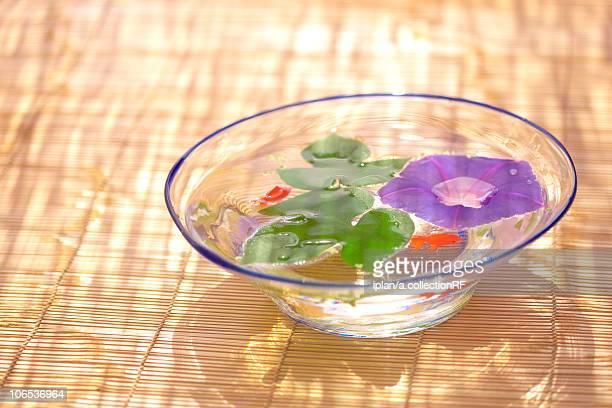 Morning glory and goldfish in glass bowl, Kanagawa prefecture, Japan