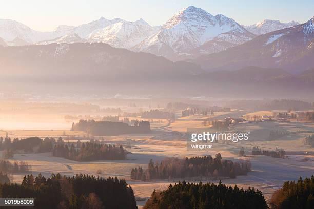 morning glory in bavaria germany