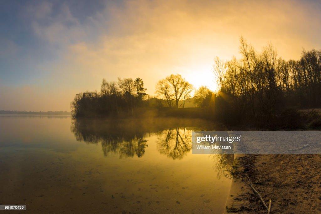 Morning Glow 'Bay' : Stockfoto