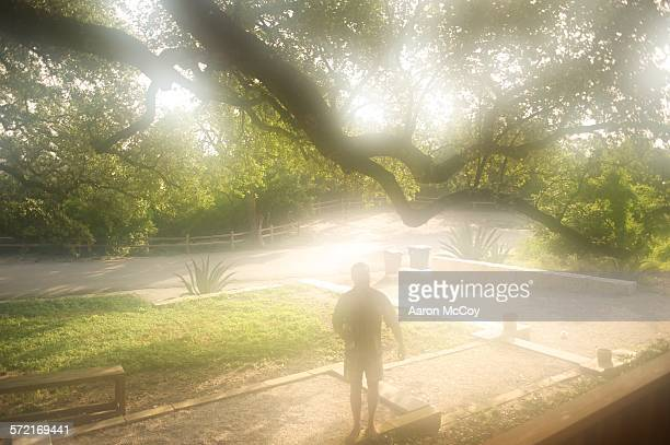 morning heat - humid stock pictures, royalty-free photos & images