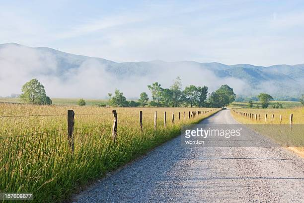 morning in cades cove in the smoky mountains - tennessee stock pictures, royalty-free photos & images