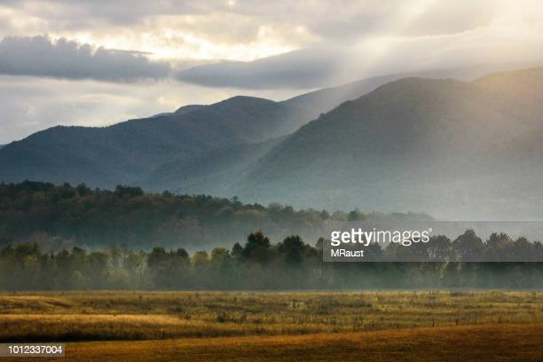 morning in cades cove - tennessee stock pictures, royalty-free photos & images