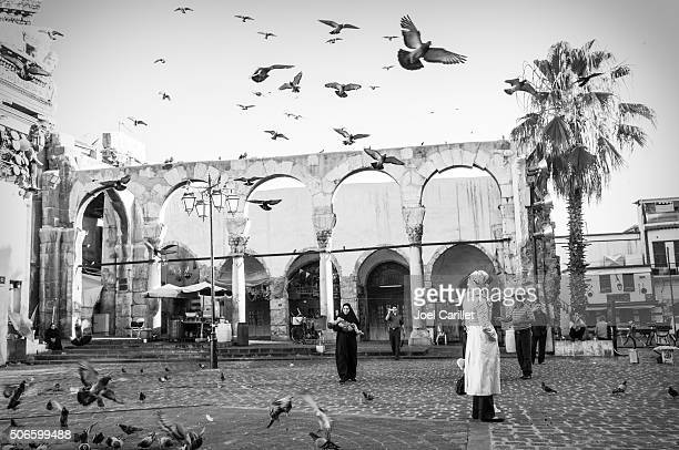 morning in damascus, syria - damascus stock pictures, royalty-free photos & images