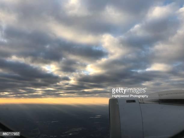 morning in flight - highlywood - fotografias e filmes do acervo