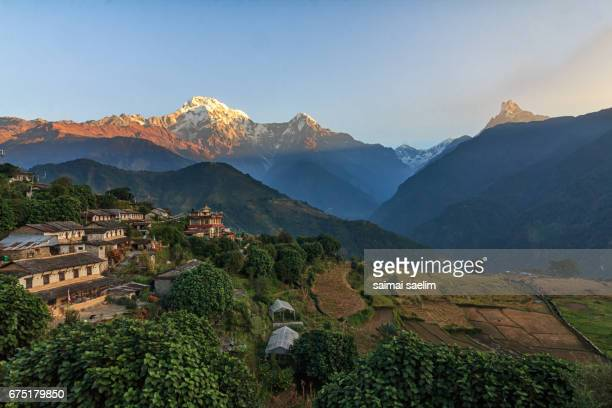 morning in ghandruk village, annapurna and machhapuchhare on background - népal photos et images de collection