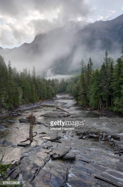 morning in glacier - brook mitchell stockfoto's en -beelden