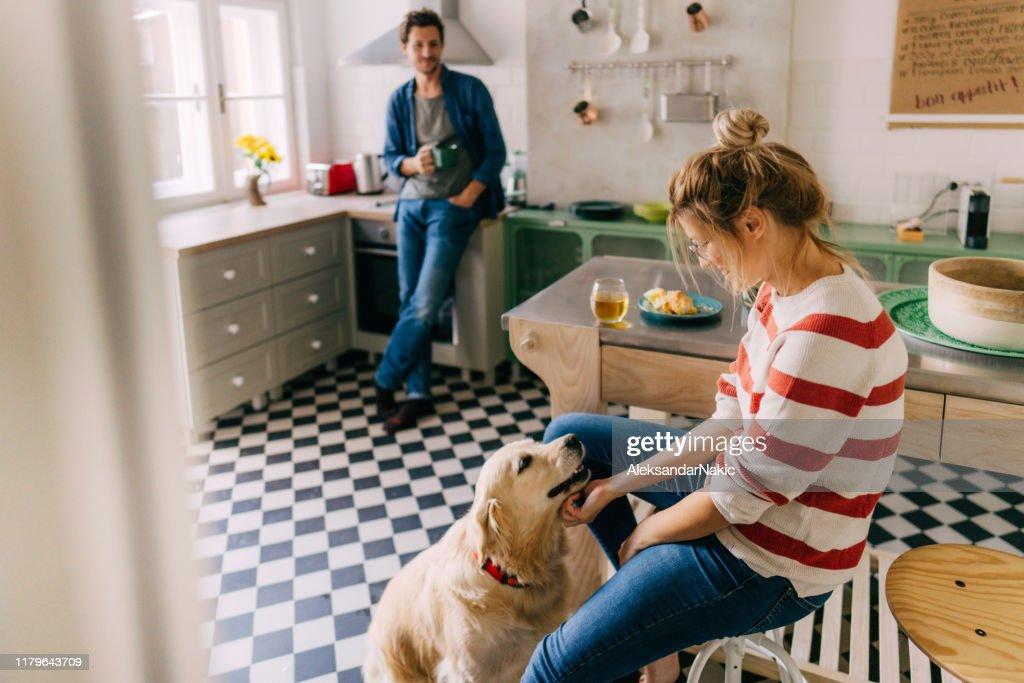 Mattina in cucina con il nostro cane : Foto stock