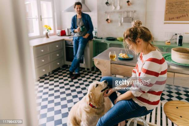 morning in the kitchen with our dog - casa foto e immagini stock