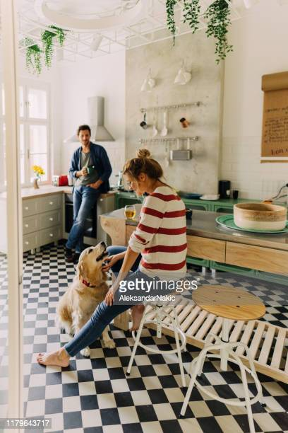 morning in the kitchen with our dog - vertical stock pictures, royalty-free photos & images