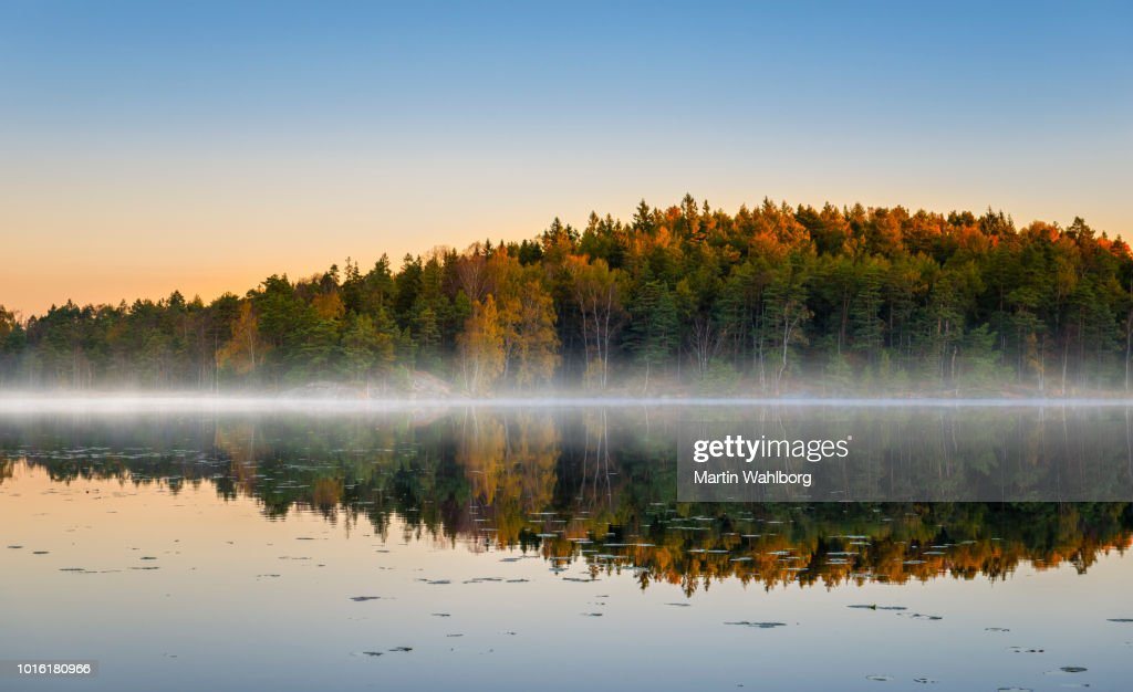 Morning lake with fog in autumn colors : Stock Photo