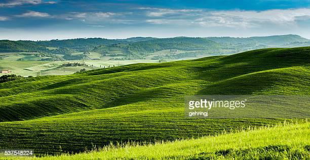 Morgen Landschaft der Toskana